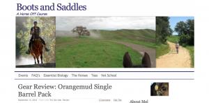 2014 blog screen shot