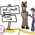 Observations from the vet line