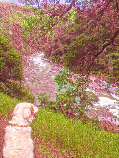 Screen Shot 2017-05-11 at 7.02.18 AM